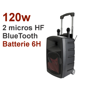 Location sono 120w sur batterie, 2 micros sans fil, BlueTooth