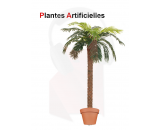 Location de plantes artificielles